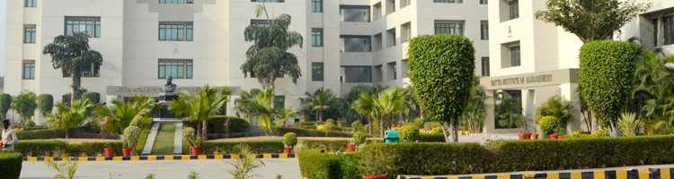 MBA College in Greater Noida, Delhi NCR